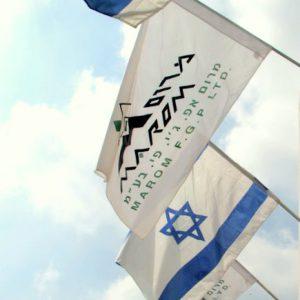 מכירת דגלים ממותגים
