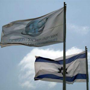 דגלי אורך, דגלי ענק ודגלי בניין