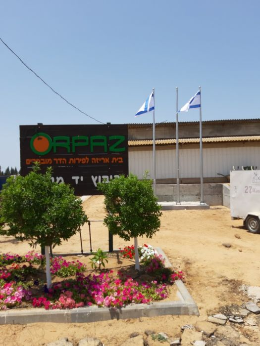Installation of a 20-foot-tall Connie steel mast at Orpaz Hadar Yad Mordechai תורן